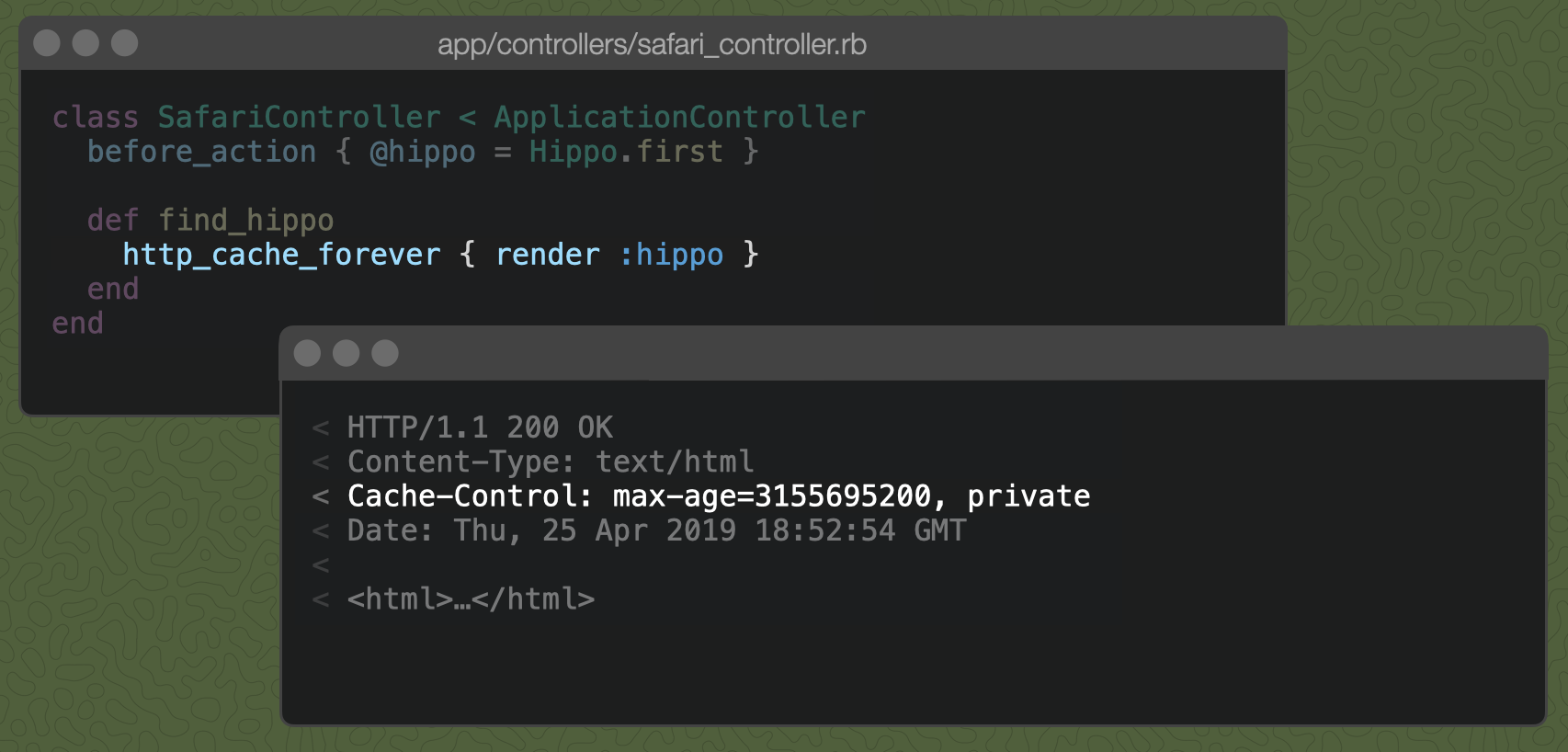 A Rails controller action with `http_cache_forever { render :hippo }` and the resulting `Cache-Control` header, described below.