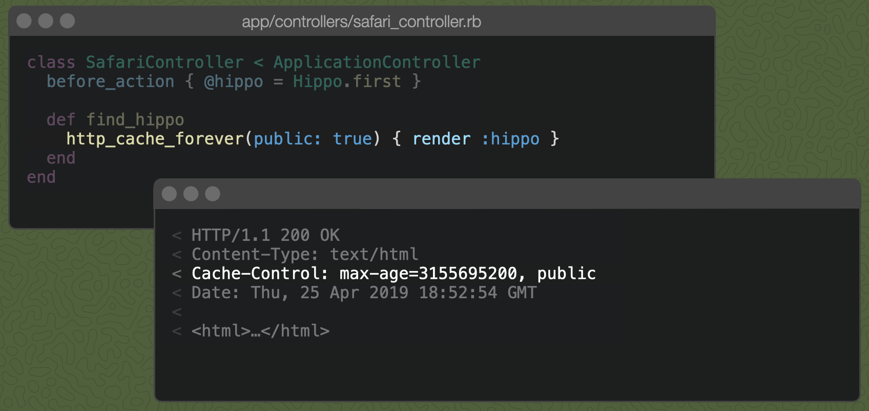 A Rails controller action with http_cache_forever(public: true) { render :hippo } and the resulting Cache-Control header, marked public.