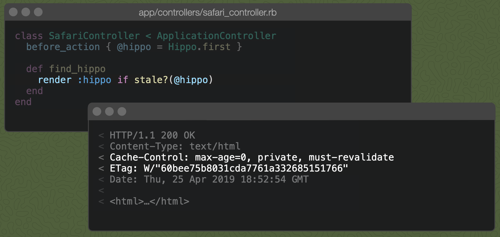A Rails controller action with render :hippo if stale?(@hippo) and the resulting Cache-Control header, described below.