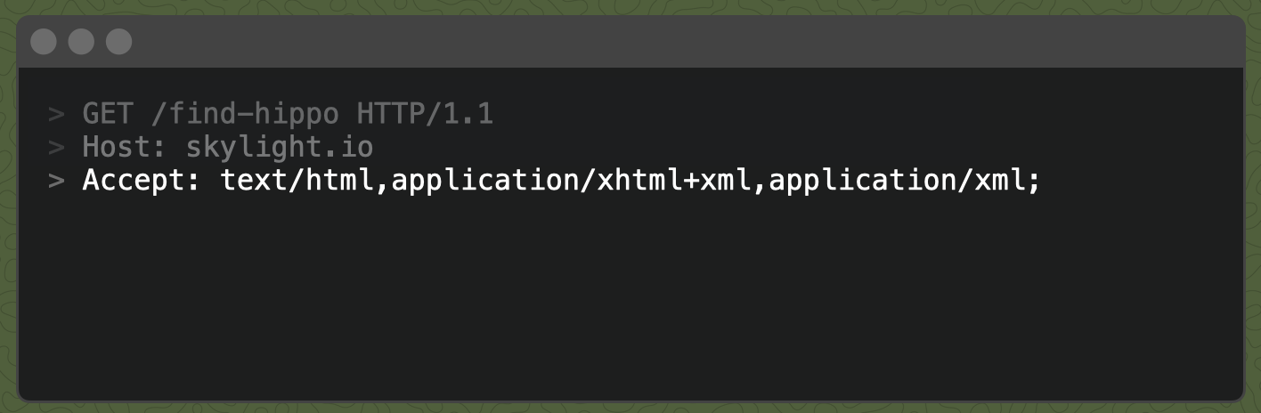 A response with `Accept: text/html,application/xhtml+xml,application/xml;`