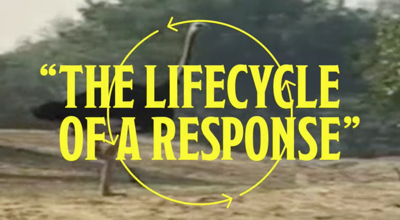 "An image from a safari overlaid with stylistic text reading ""THE LIFECYCLE OF A RESPONSE"""